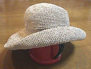 Hat100528_3